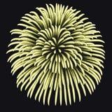 在夜背景,破裂烟花的周年的烟花 皇族释放例证