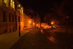 在夜街道上的光 免版税库存照片