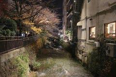 在夜视图的Gion白川町在秋天 库存照片