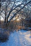 在夜风暴以后的冬天日出 免版税库存照片