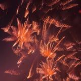 在夜间天空的烟花 免版税库存照片