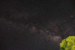 在夜间天空的美丽的海星 图库摄影