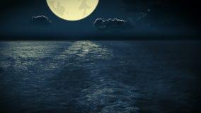 在夜间海洋的航海 影视素材