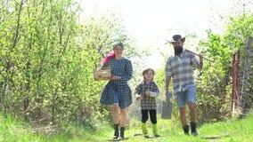 在大农场的国家人生的春天 一起使用爸爸的妈妈和的儿子 家庭的Eco农场 父母教婴孩 ?? 股票录像