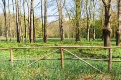 在大农场的老木篱芭 库存照片