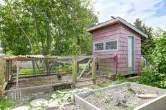 在大农舍后院的母鸡与美丽的花圃的 免版税库存照片