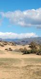 在大加那利岛海岛上的沙丘 库存图片