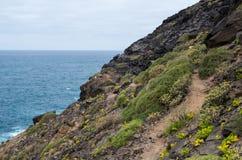 在大加那利岛的沿海小径 免版税库存图片