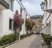 在大加那利岛的Puerto de Mogan花卉大道 库存图片