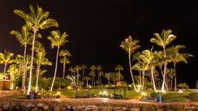 在大加那利岛西班牙海岛上的夏夜  库存照片