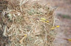 在大包的箭头干燥,金黄干草 免版税图库摄影