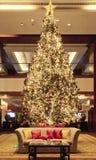 在大厅的圣诞树 免版税库存照片