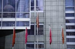 在大厦前面的中国旗子 库存照片