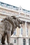 在大厦前面的狮子雕象 免版税库存照片