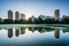 在大厦和哈林Meer的日出,在曼哈顿,新的Yo 免版税库存图片