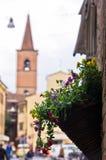 在大厦墙壁上的花盆,费拉拉街道  免版税图库摄影