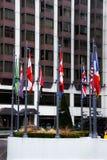 在大厦的帆柱的旗子 免版税库存照片