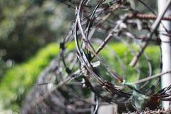 在大厦附近架线安全的有刺的篱芭硬钢铁金属在监狱或障碍安全 免版税图库摄影