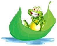 在大叶子的一只微笑的青蛙 免版税库存照片