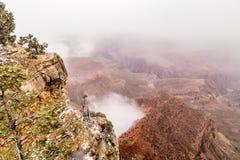 在大峡谷的红色山 库存照片