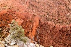在大峡谷的红色岩石 免版税库存照片