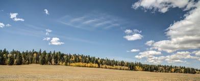 在大峡谷,北部外缘的秋天 图库摄影
