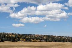 在大峡谷,北部外缘的秋天 免版税库存照片