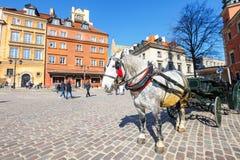 在大广场的马支架在华沙在一个晴天 华沙是P资本和大城市 库存图片