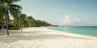 在大开曼海岛,开曼群岛上的七英里海滩 图库摄影