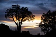 在大弯的日落 图库摄影