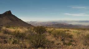在大弯的Chisos山 库存图片