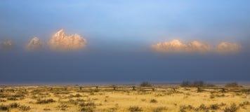 在大提顿峰山脉的雾 免版税库存照片