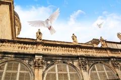 在大教堂和飞行鸽子的屋顶的雕塑在市杜布罗夫尼克,克罗地亚 免版税库存照片