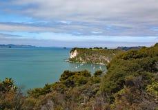 在大教堂小海湾的田园诗海岸线在科罗曼德半岛在北岛,新西兰 免版税库存照片