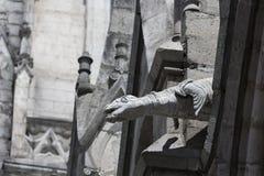 在大教堂del沃托Nacional的海狮面貌古怪的人 免版税库存照片