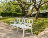 在大树阴影笼罩下的长的白色椅子 免版税库存图片