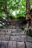 在大桶Phou寺庙复合体,占巴塞省省,老挝的石步 库存图片