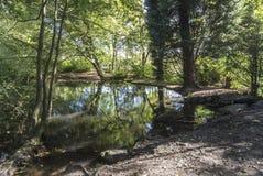 在大池塘的早期的秋天在希顿公园,曼彻斯特 库存图片