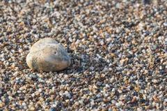 在大沙子的石头 免版税库存照片