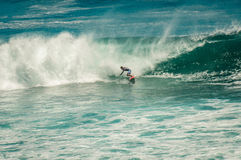 在大波浪以后的冲浪者 免版税库存照片