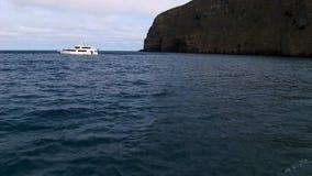 在大海表面背景的白色游艇在太平洋 影视素材