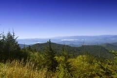 在大烟雾弥漫的山脉国家公园的领域 免版税库存图片