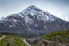 在大理石峡谷附近的一座山在库特尼国家公园,不列颠哥伦比亚省 图库摄影