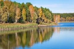 在大美丽的湖的银行的秋天木头 免版税库存图片