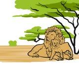 在大草原变冷的狮子 皇族释放例证