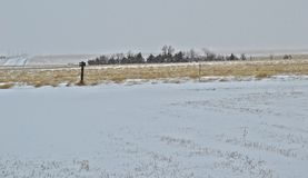 在大草原的冬天 库存图片