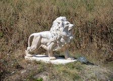 在大草原的另一个狮子雕象 库存图片