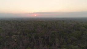 在大草原的日落 影视素材