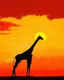 在大草原的长颈鹿在日落 免版税图库摄影