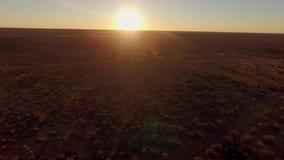 在大草原纳米比亚的美好的日落 股票录像
